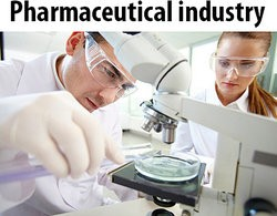 Scientists In The Pharmaceutical Industry As Top 10 Argumentative Essay Topics