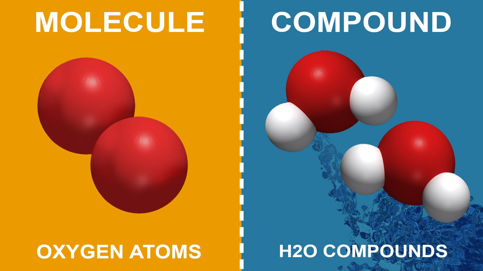 difference between molecule and compound