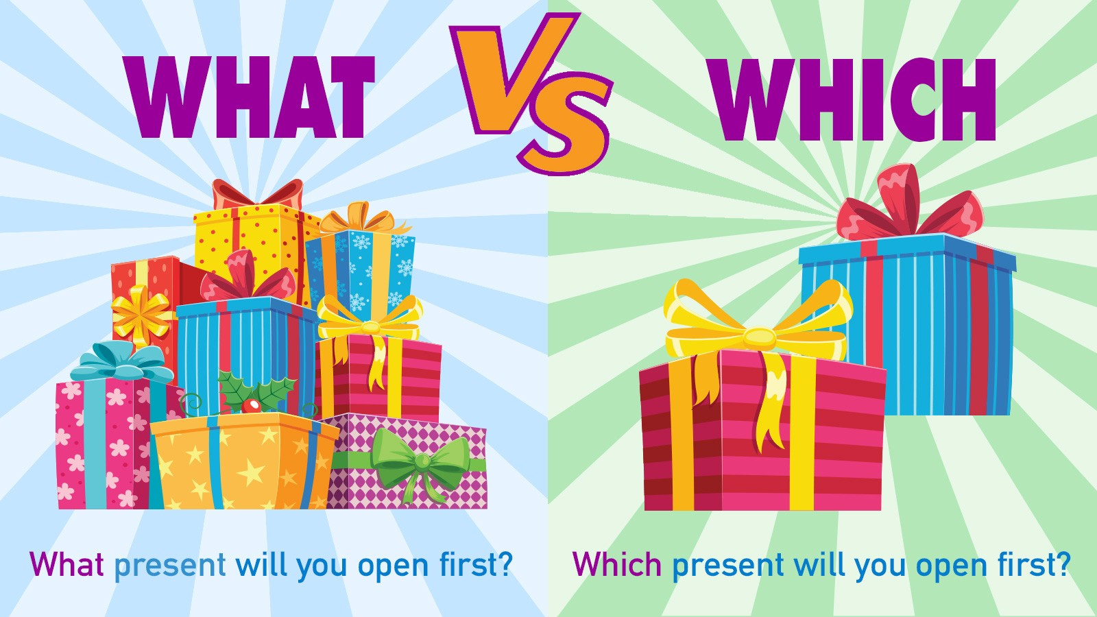 what vs which example