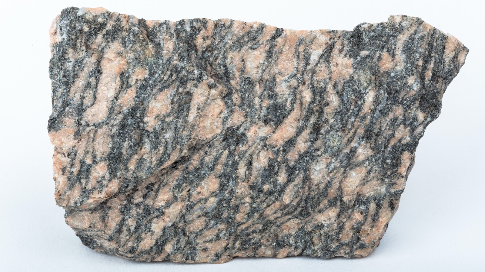 Foliated Metamorphic gneiss rock