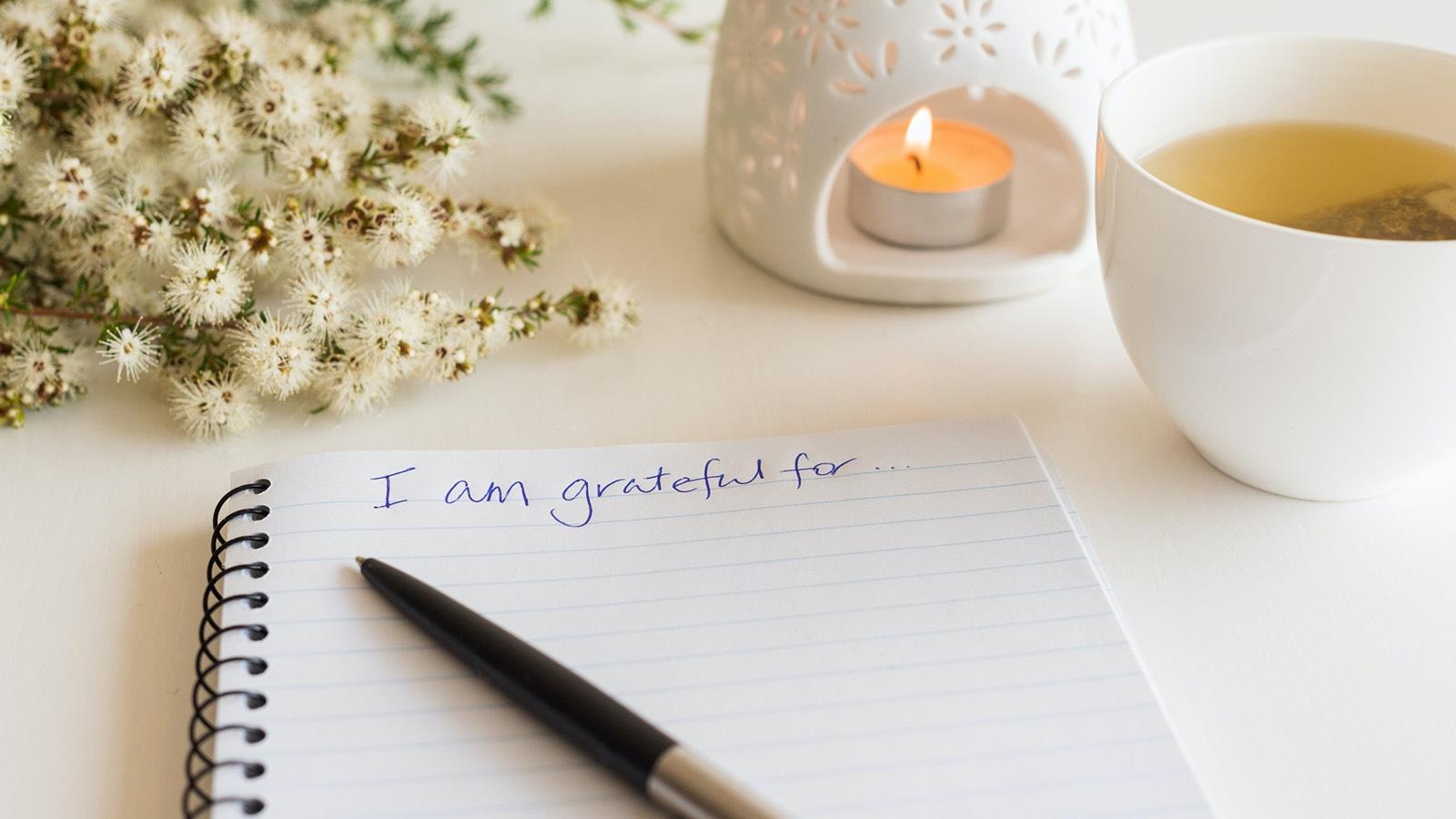Grateful spiral notebook