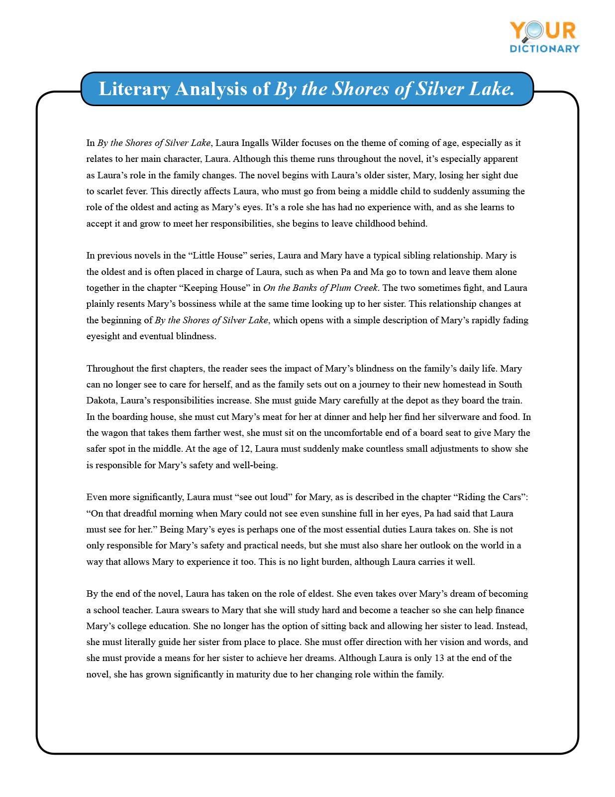 Literary Analysis Essay Example