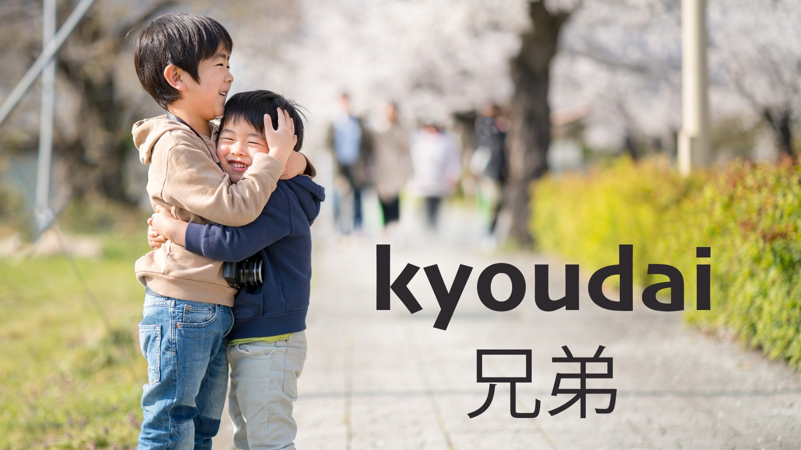 japanese word kyoudai meaning brother