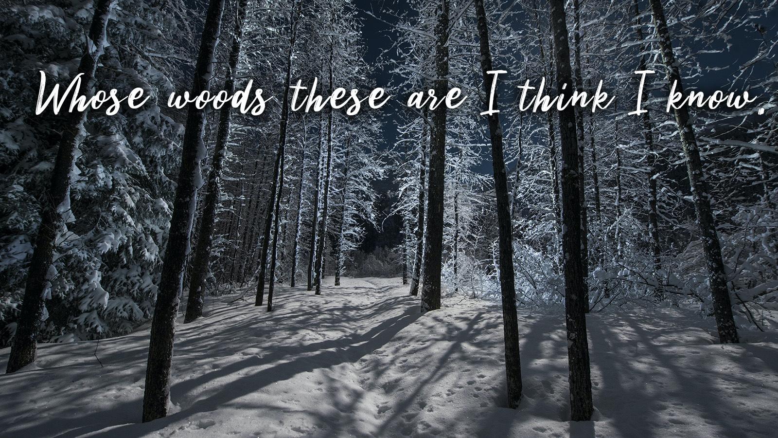 snowy wood poem Robert Frost