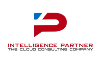 Intelligence Partner