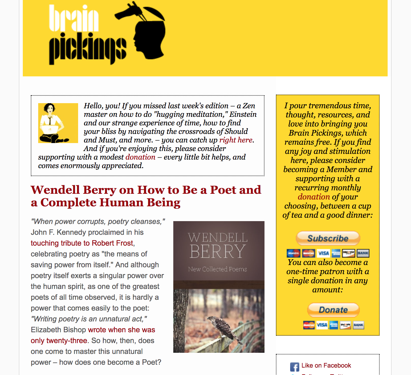 Brain pickings newsletter share curated content