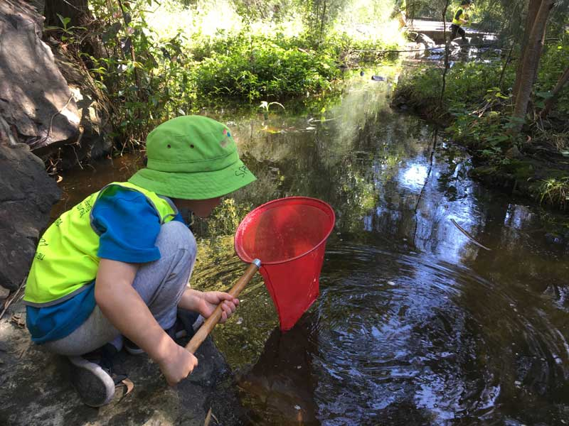Child discovers the benefits of the Bush Kindy program