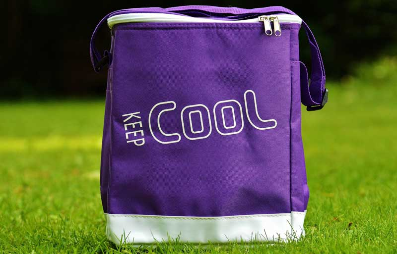 A cooler bag with an ice brick helps with breast milk storage and transportation.