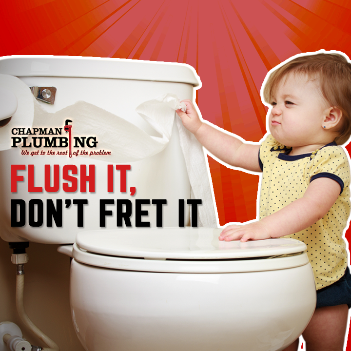Flush It, Don't Fret It. Chapman Plumbing