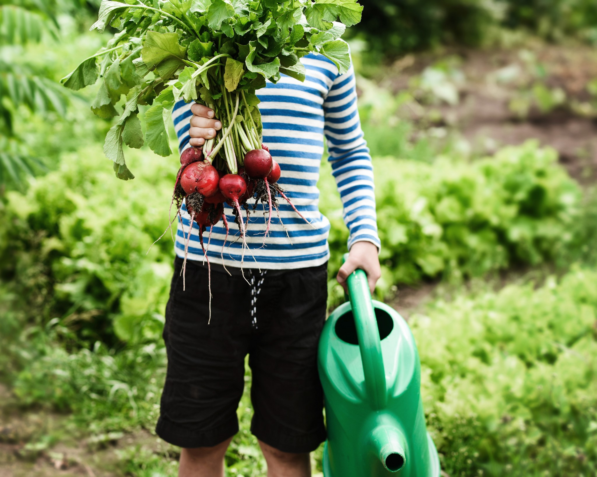 Schöne Kinderbücher für kleine Gartenfreunde