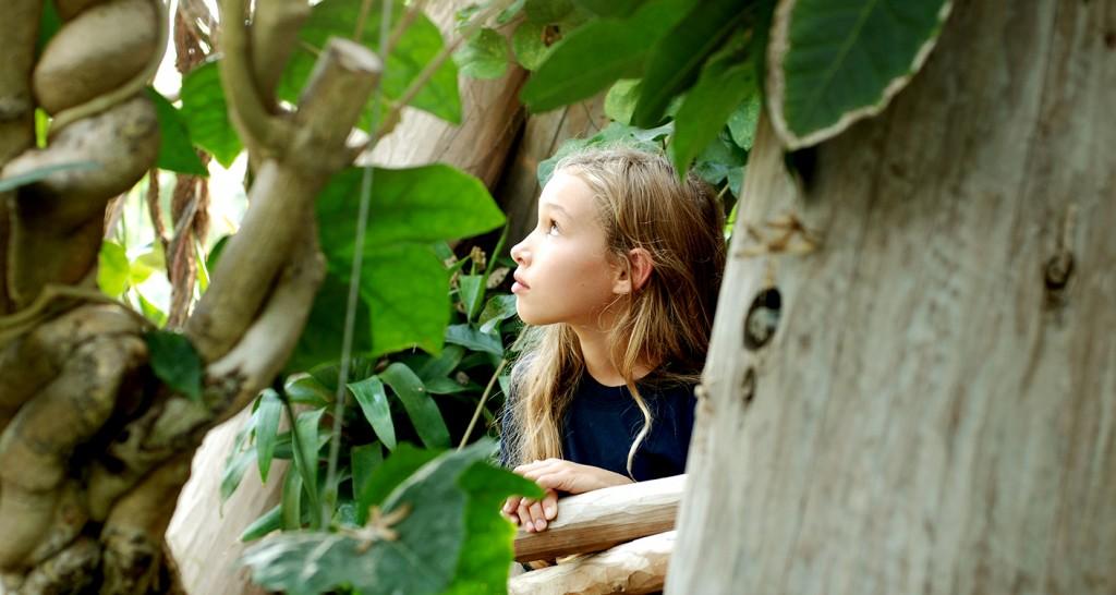@Botanischer Garten Aarhus