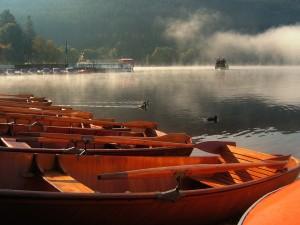 Spaß für die ganze Familie: Eine Bootstour auf dem Titisee (Foto: Pixabay)