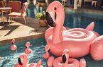 Flamingo Schwimmtier Pool Strand Meer Sommer Schwimmen Baden