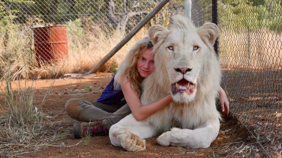Film Mia und der weiße Löwe
