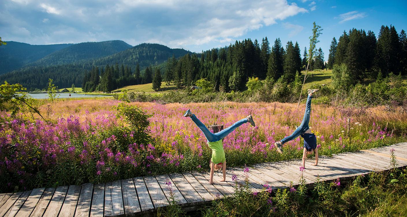 Oststeiermark mit Kindern – Urlaub im Garten Österreichs