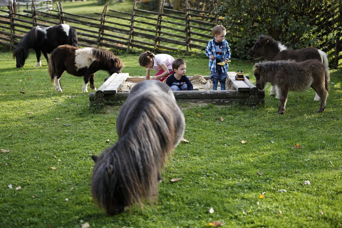 Kinder mit Ponys