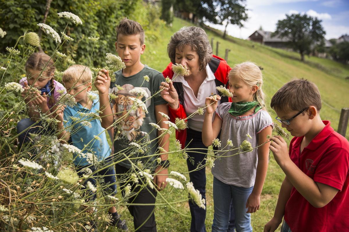Urlaub mit Kindern in der Oststeiermark
