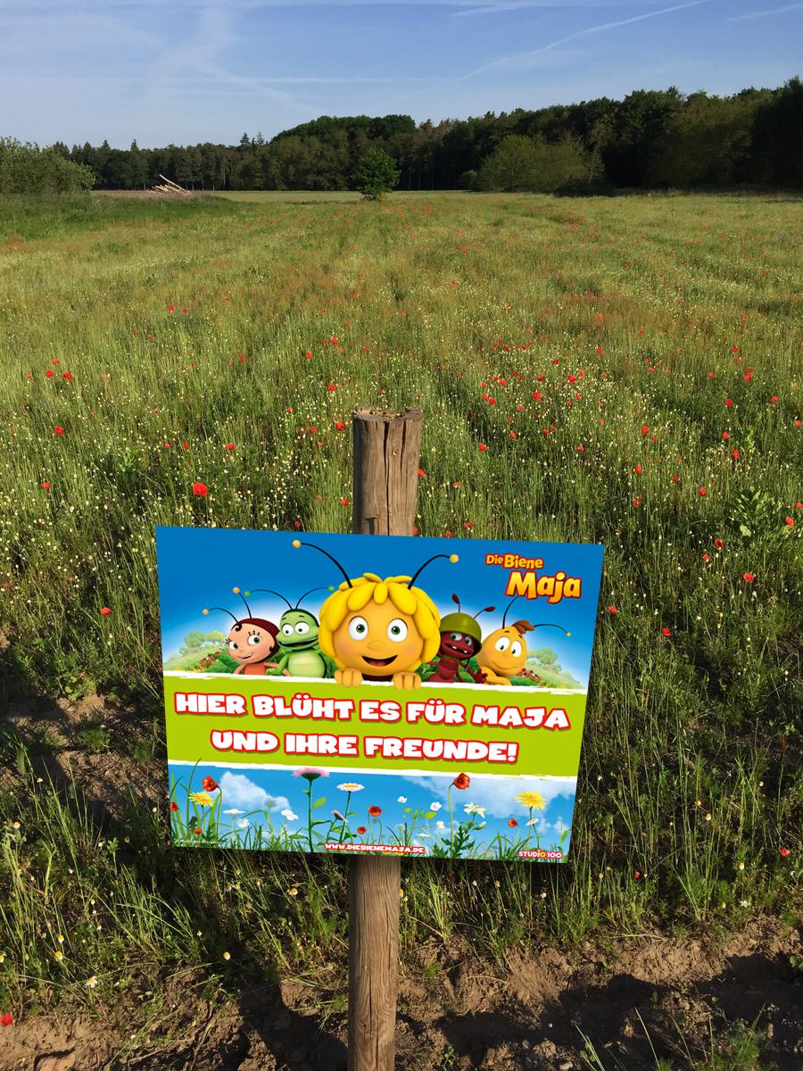 Biene Maja hilft Bienen retten
