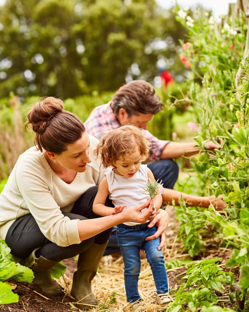 Artensterben verhindern, Kräutergarten pflanzen; gettyimages