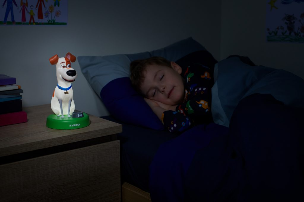 Nachtlicht Terrier Pets
