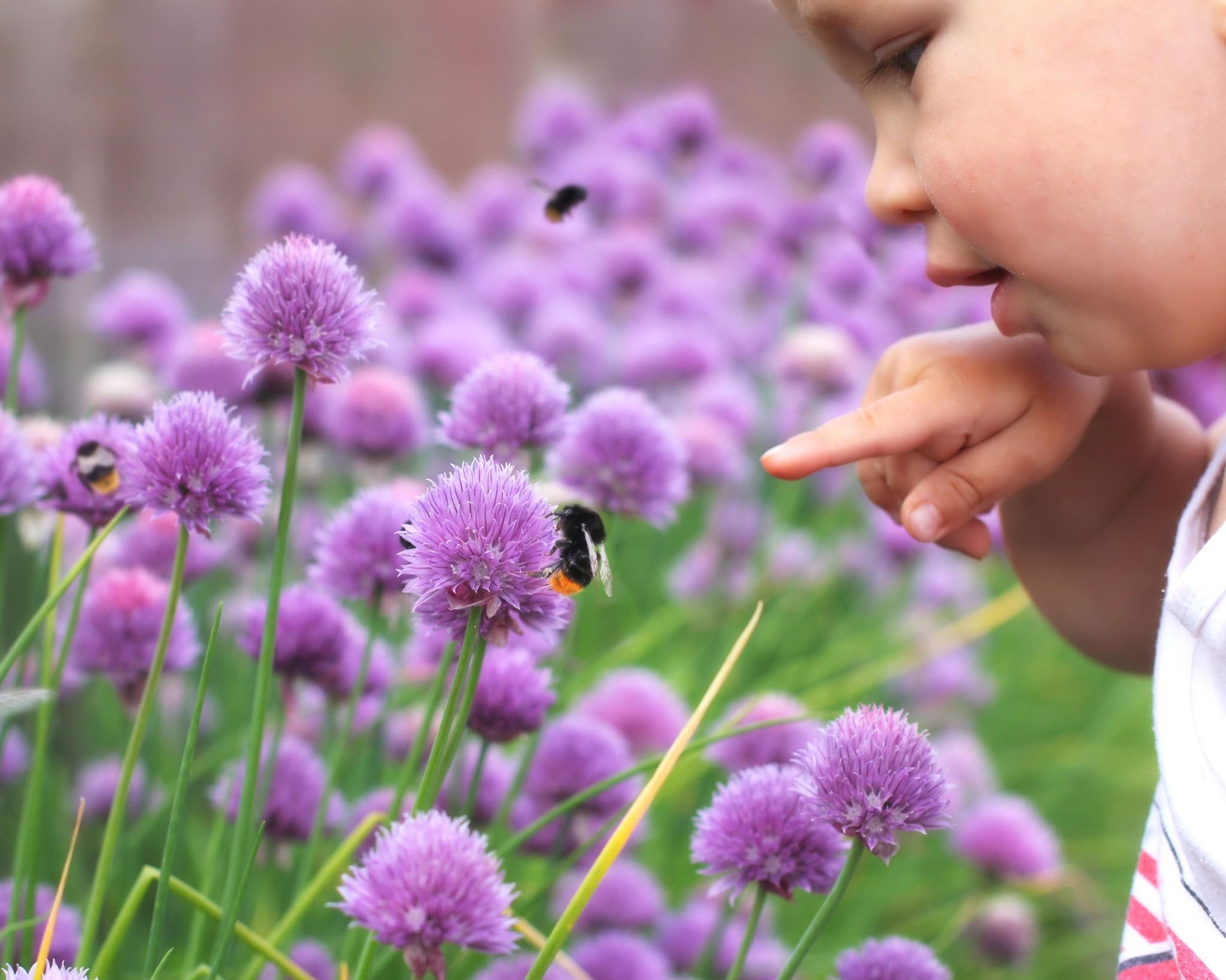 Artensterben: 10 einfache Tipps, was ihr mit euren Kindern dagegen tun könnt