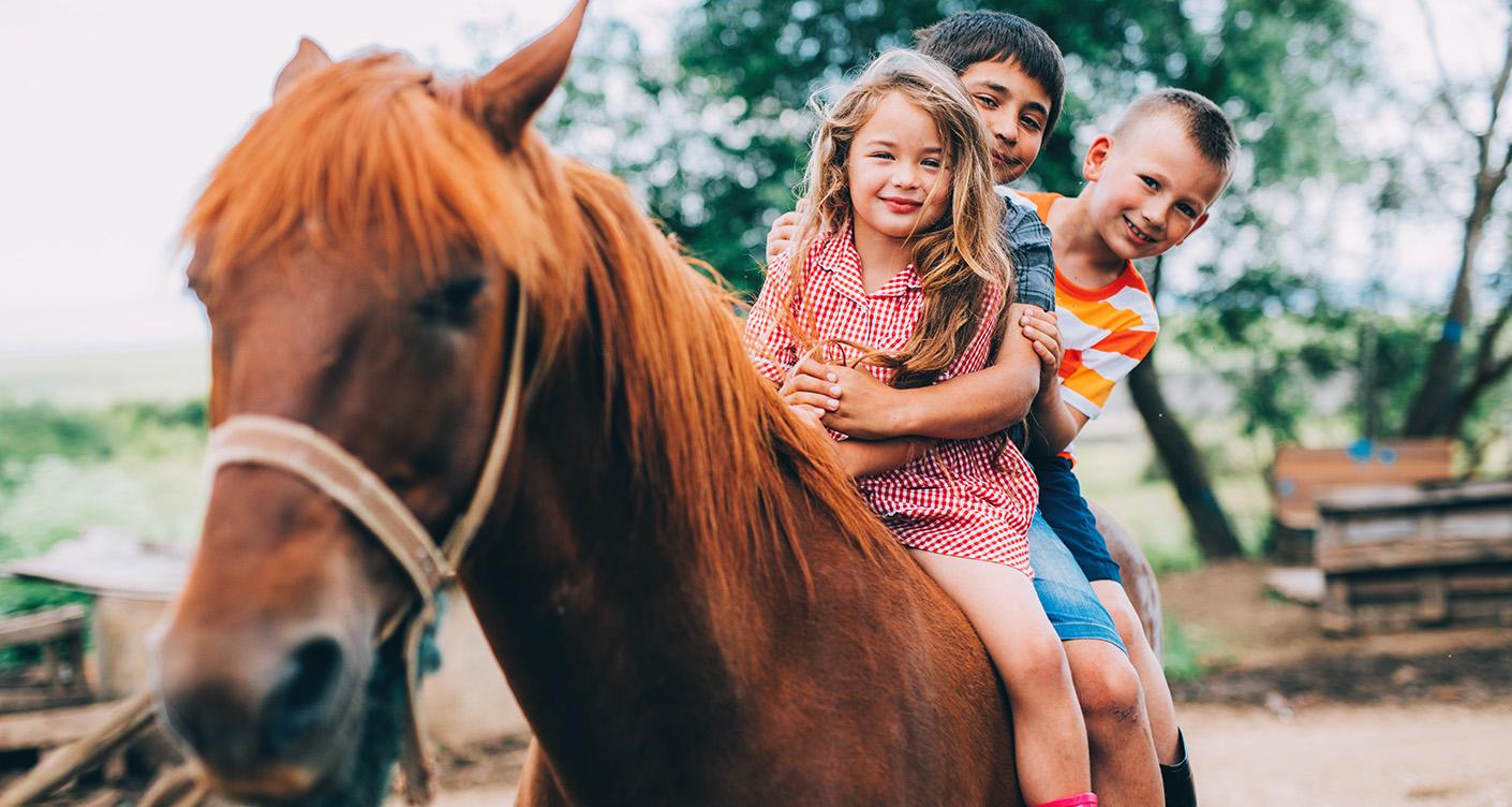 Ferienlager: Diese 4 Adressen garantieren Spaß in den Schulferien