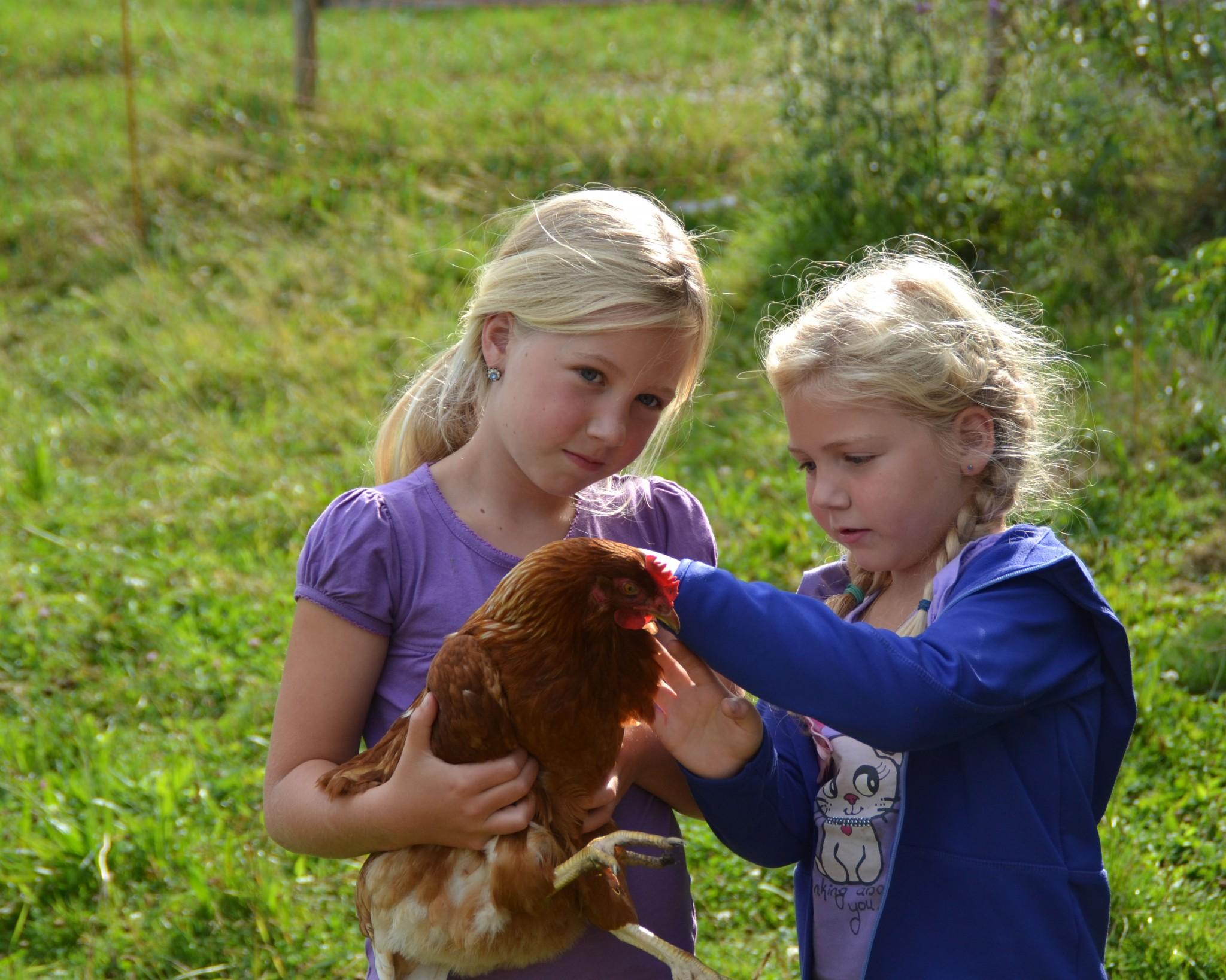 Ferien auf dem Bauernhof: Diese Höfe empfehlen wir!