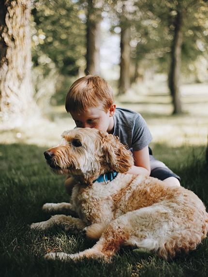 Der erste Hund in der Familie? Das solltet ihr vorher beachten