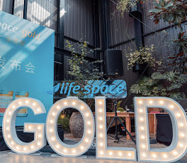 LED 'GOLD' Letter Lights by Luxe Dream Event Hire. Thank you Life-Space