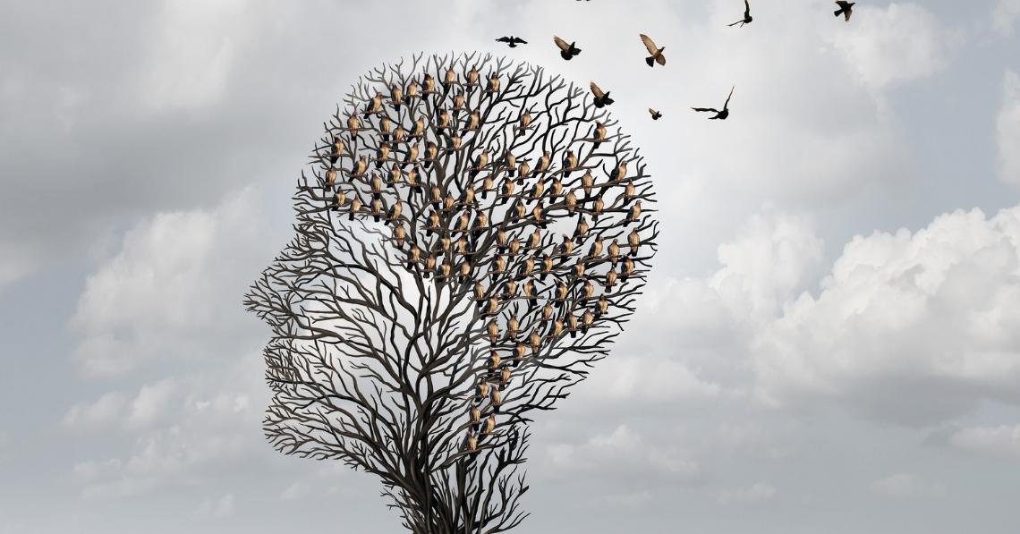 Natural Ways to Improve Memory