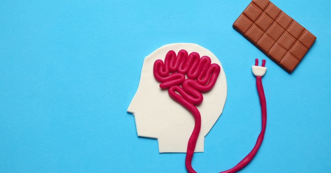 Chocolate and it connection to the brain