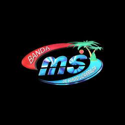 Banda MS de Sergio Lizárraga