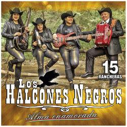 Los Halcones Negros