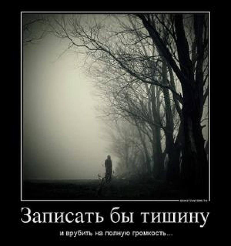 владельцы животных, я слушал как молчала тишина Гагарина взяла