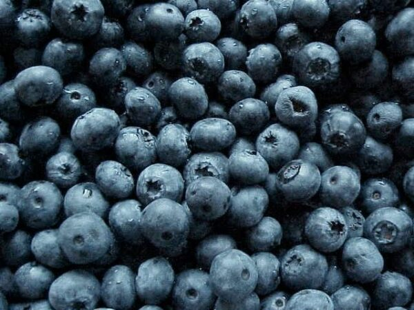 Mad Vapor, Blueberry