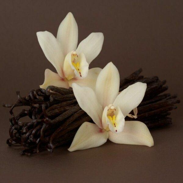 Mad Vapor, French Vanilla