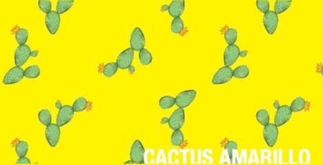 cactus-amarillo