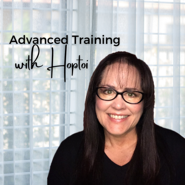 Advanced Training with Hoptoi picture