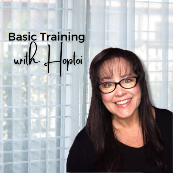 Basic Training with Hoptoi picture