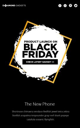 Black Friday Product Launch
