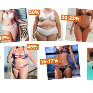 fettprocent i kroppen