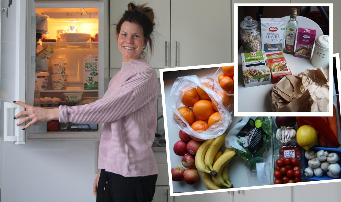 Sofia fridge start