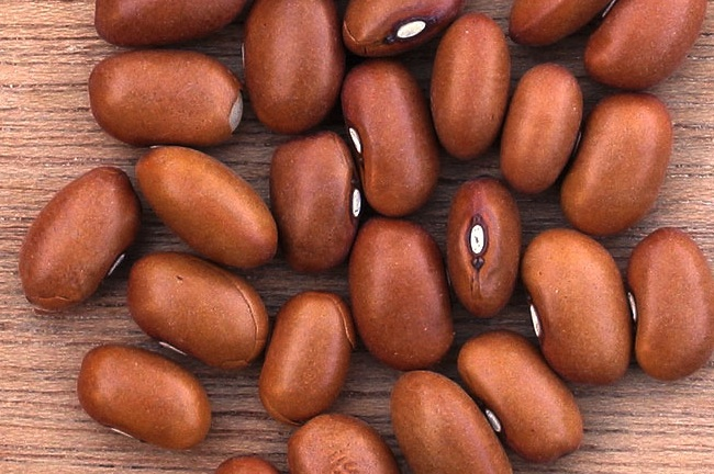 bean 4