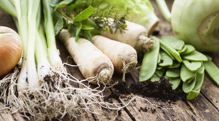 Är ekologisk mat ett hälsosammare val?