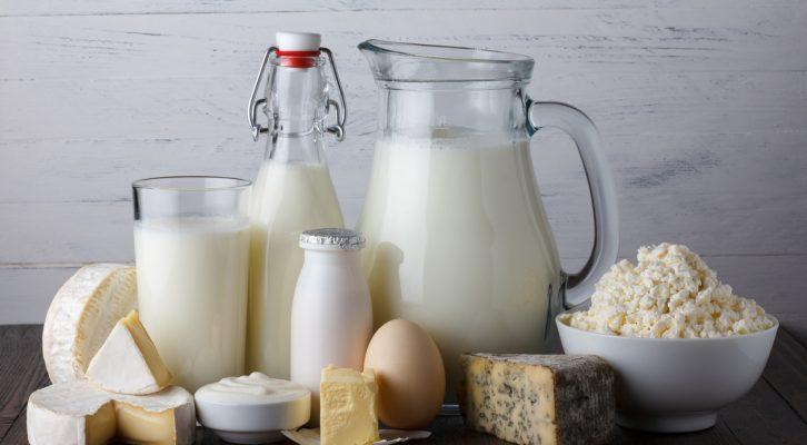 Mjölkprodukter: fullfeta eller magra – vad är bäst?