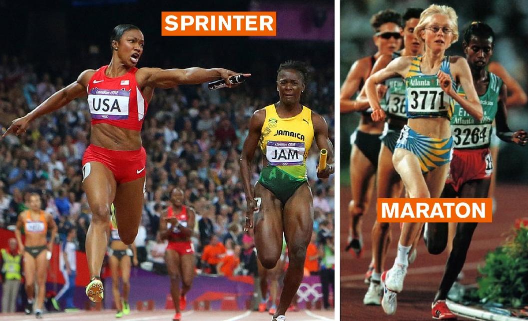 sprint inne