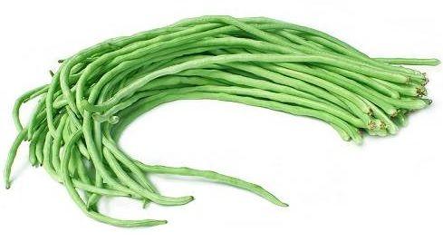 Image result for kacang panjang