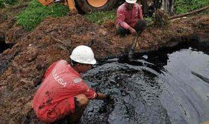 manfaat minyak bumi