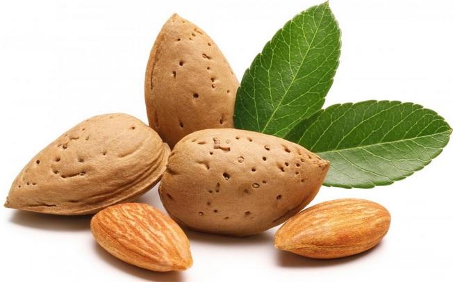 31 Manfaat Kacang Almond Untuk Kecantikan dan Kesehatan