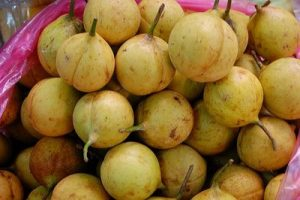 manfaat buah pala